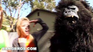BANGBROS – Rebecca Blue, Tara Lynn Foxx and Katie Summers Monkey Around (bbw7798)